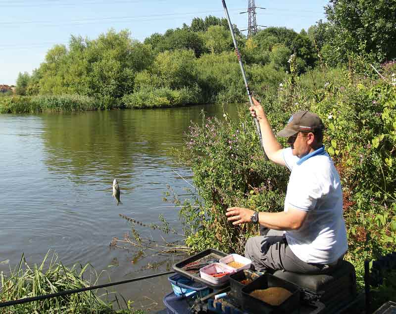 coarse uk scott geens male whip fishing river thames 3