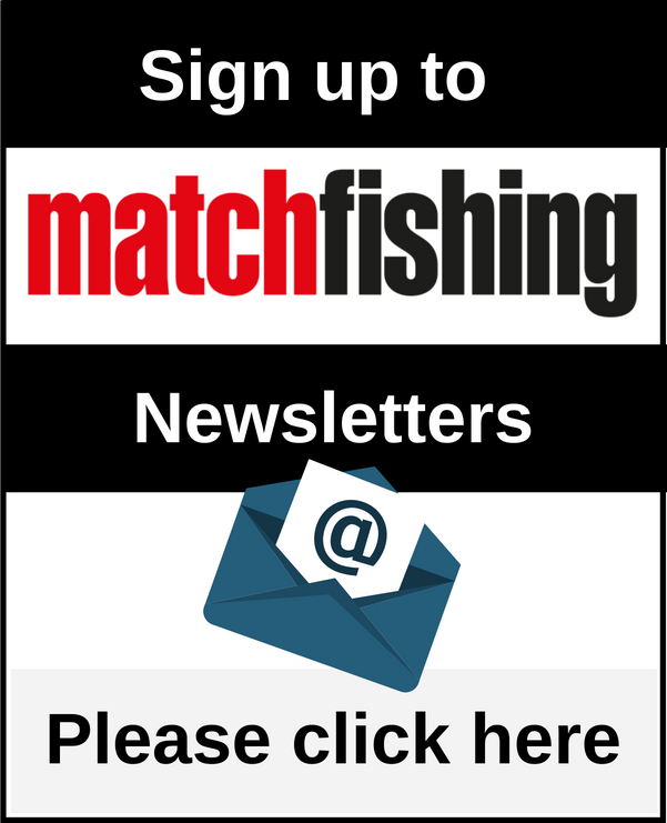 MF Newsletters